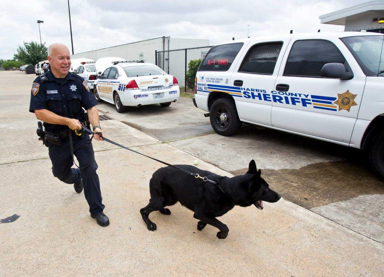 Photograph By NICK DE LA TORRE/HOUSTON CHRONICLE Via k9s4cops.org